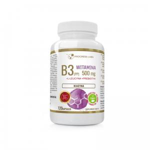 Progress Labs Niacyna Witamina B3 (PP) 500mg + Inulina 120 Kaps.